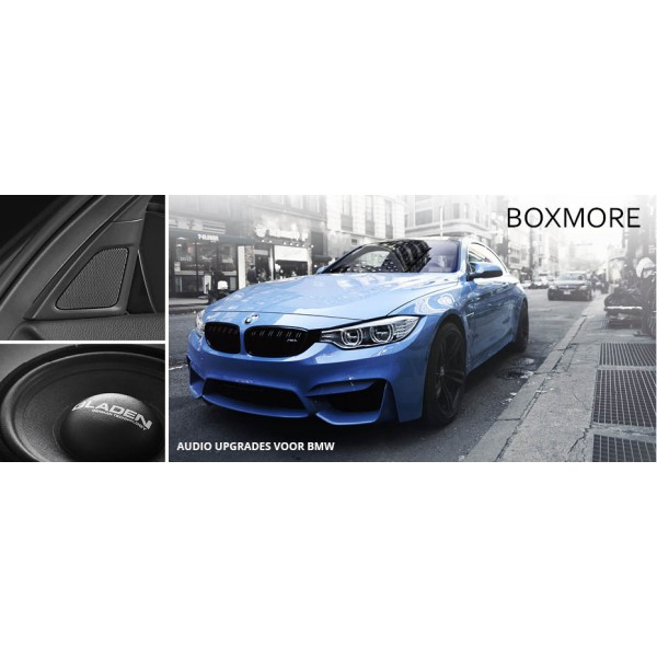 Boxmore Audio upgrade BMW DSP