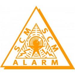 Alarmsysteem  met autorisatie (voorheen Klasse 2)